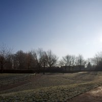 A sunny winter morning