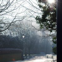 A sunny winter morning (part 2)